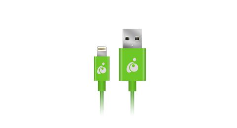 Charge & Sync Flip 3.3ft (1m) - Green, Reversible USB to Lightning Cable